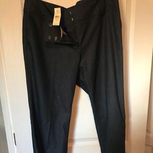 Loft trouser jeans size 14 NWT
